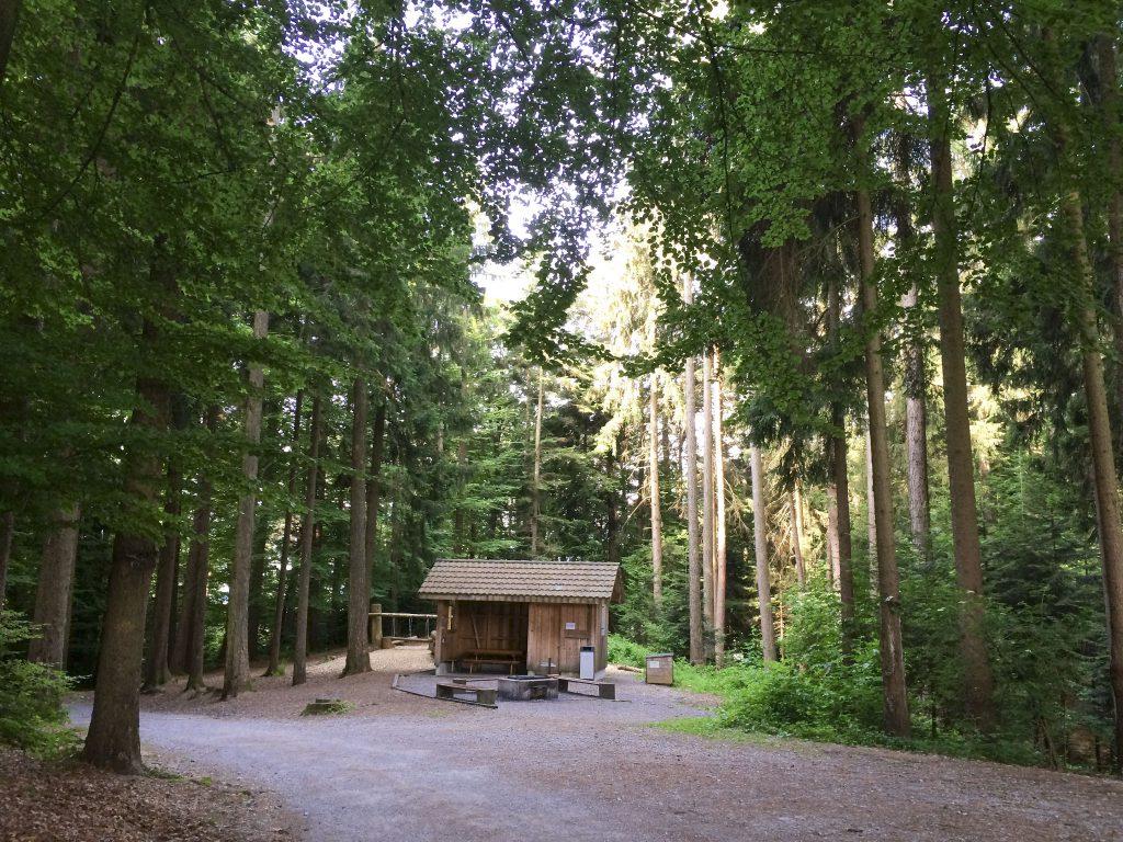 Feuerstelle Buechberg Wangen