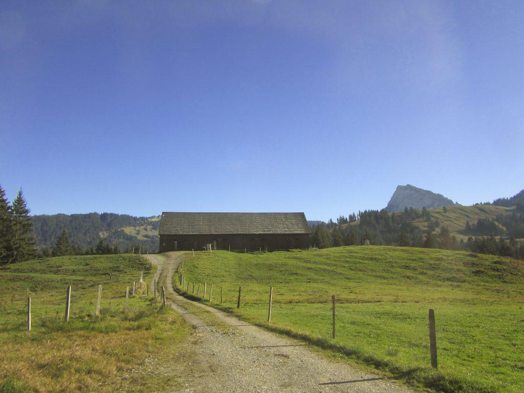 Alp Genossameweid der Genossame Wangen